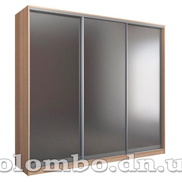 Шкаф-купе 3-ёх дверный с зеркалом