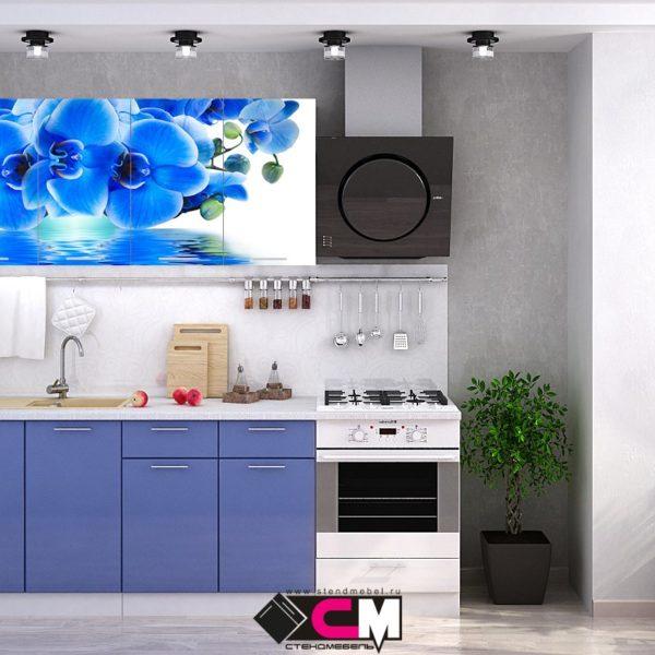 Кухня с фотопечатью голубая орхидея Стенд Мебель Донецк Макеевка ДНР Colombo
