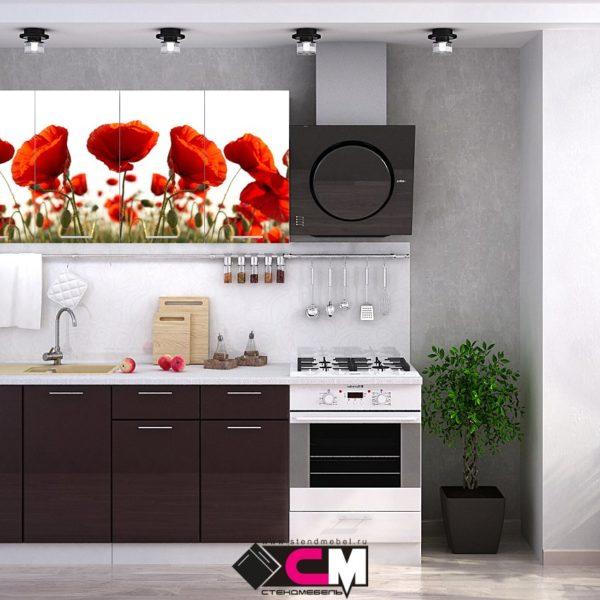 Кухня с фотопечатью Маки Стенд Мебель Донецк Макеевка ДНР Colombo