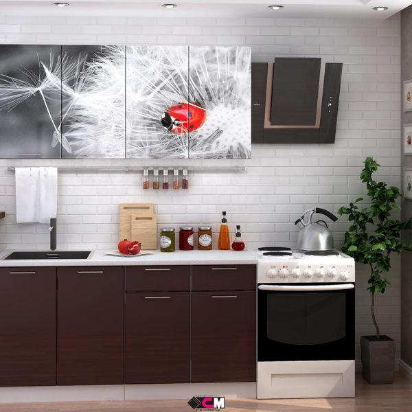 Кухня с фотопечатью одуванчик Стенд Мебель Донецк Макеевка ДНР Colombo