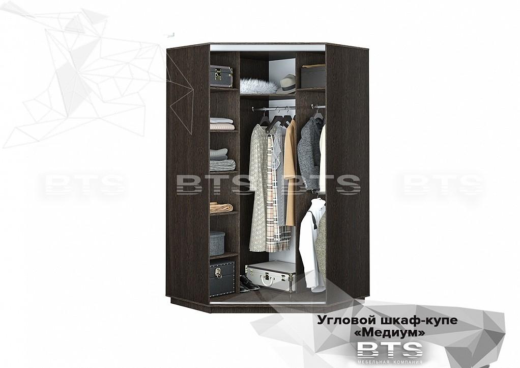 Угловой шкаф-купе Медиум