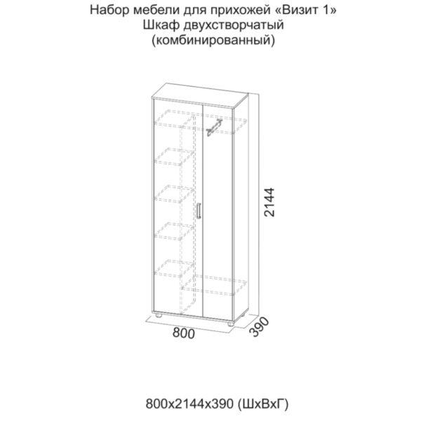 Шкаф комбинированный Визит-1